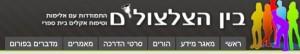 bin hazlzolim database 2013