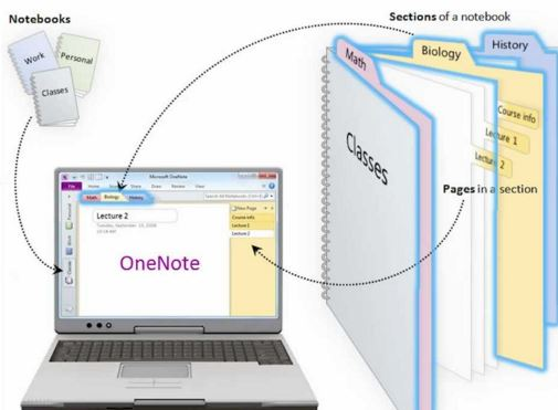 onenote illustration