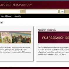 florida digital library start